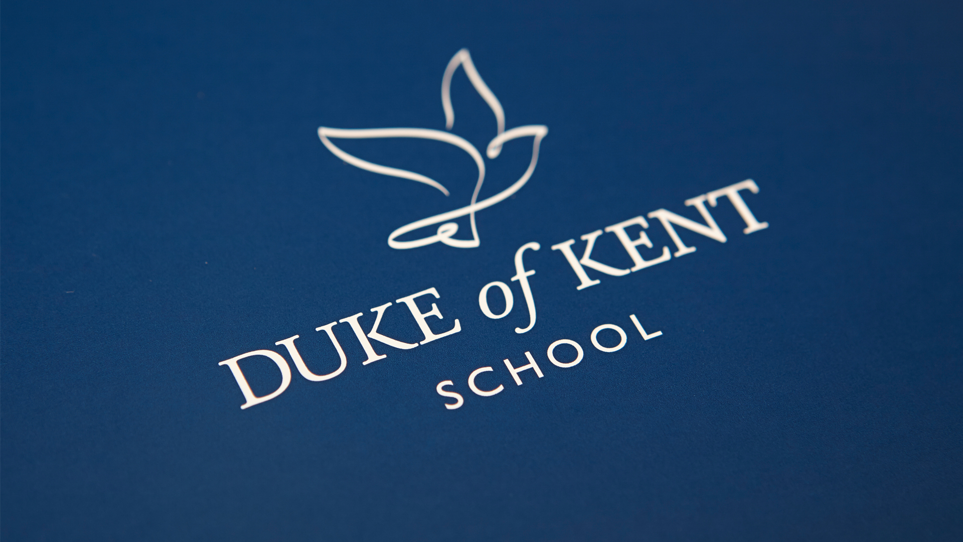 Duke Of Kent branded logo blue